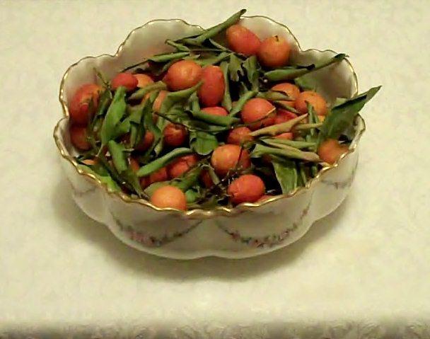 Fresh, organic Lousiana kumquats